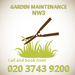 Hampstead garden lawn maintenance NW3