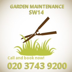 East Sheen garden lawn maintenance SW14