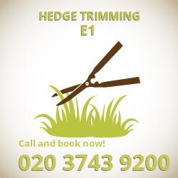 E1 hedge trimming Stepney