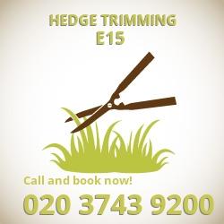E15 hedge trimming Stratford