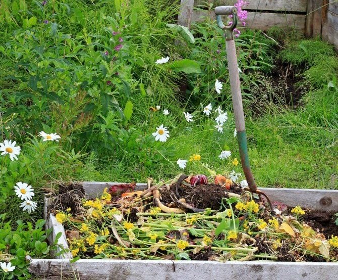 turning your compost pile