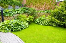 Garden Landscaping in Harringay on a Budget