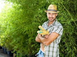 Hiring Help For Your Garden in Kensington