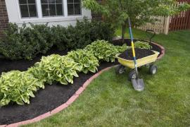 Save Money in Harrow with These Inexpensive Garden Landscaping Tips