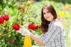 BR5 garden edging ideas