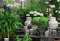 effortless garden makeover Hadley Wood