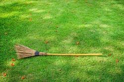 Barnet garden maintenance EN5