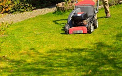 grass paths cleaning HA9