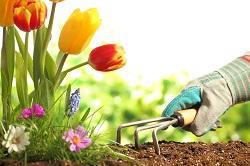 effortless garden makeover Ewell