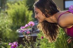 SM6 garden edging ideas