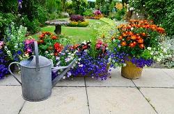 W1 garden hedge Park Lane