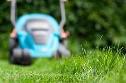 turning soil and weeding Alexandra Park