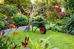 NW2 lawn care Brent Cross