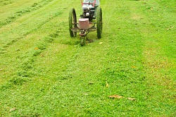 Clapham pure organic composting lawns SW11