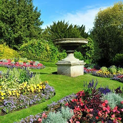 SW18 perennial flowers planning Earlsfield