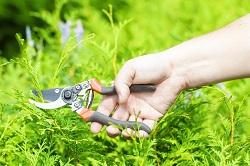 Epsom cheap garden landscaping materials KT18