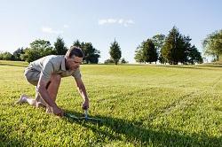 KT18 garden landscaping Epsom
