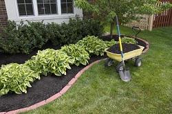 turning soil and weeding Furzedown