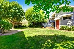 NW5 garden landscaping Gospel Oak