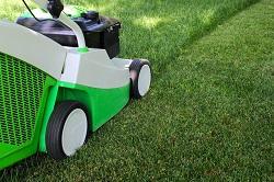 W4 lawn care Grove Park