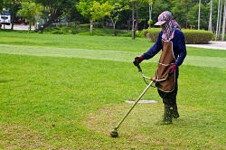 reliable landscapers RM4