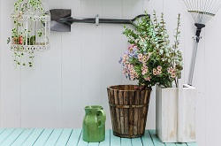Hornsey bedding plants care N8