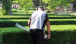 W9 garden landscaping Little Venice