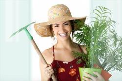 landscaping experts across Malden Rushett