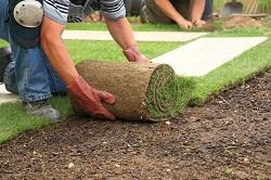turning soil and weeding Primrose Hill