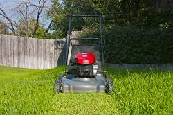 Wimbledon cheap garden landscaping materials SW20