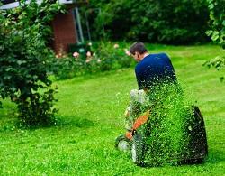 UB7 lawn care Yiewsley